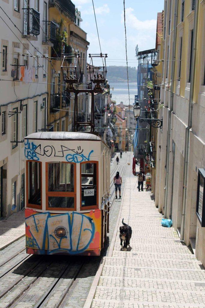Bica in Lissabon
