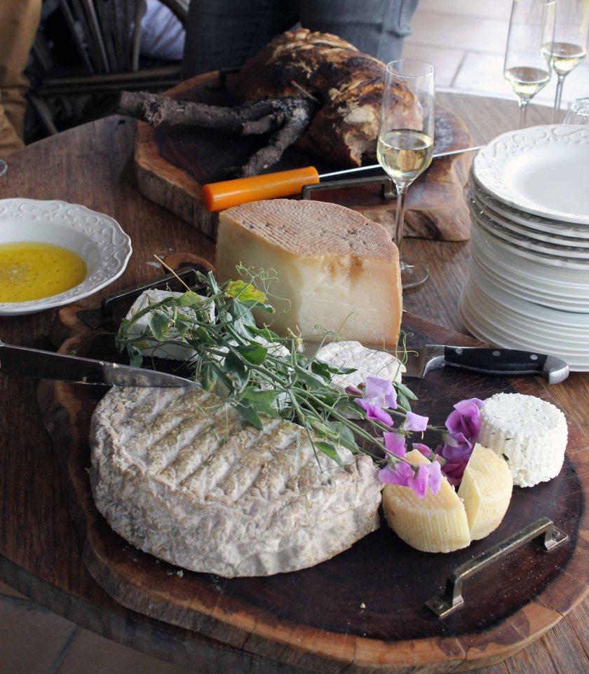 Käse aus den Golan Höhen