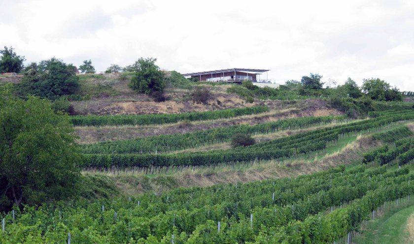 Idyllisch an der Ortseinfahrt von Mollands in den Weinbergen gelegen: die Weinbeisserei